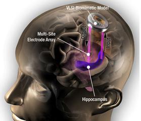 Мозг и нанотехнологии Рефераты курсы КП ПК ИТ и Сети  Мозг и нанотехнологии